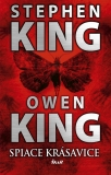 Spiace krásavice [King Stephen, Owen King]
