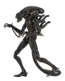 Aliens Action Figure 23 cm Ultimate Warrior Brown