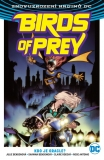 Birds of Prey 01: Kdo je Oracle?
