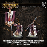 WM Protectorate - Temple Flameguard Officer & Standard