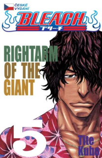 Bleach 05: Rightarm of the Giant CZ [Kubo Tite]